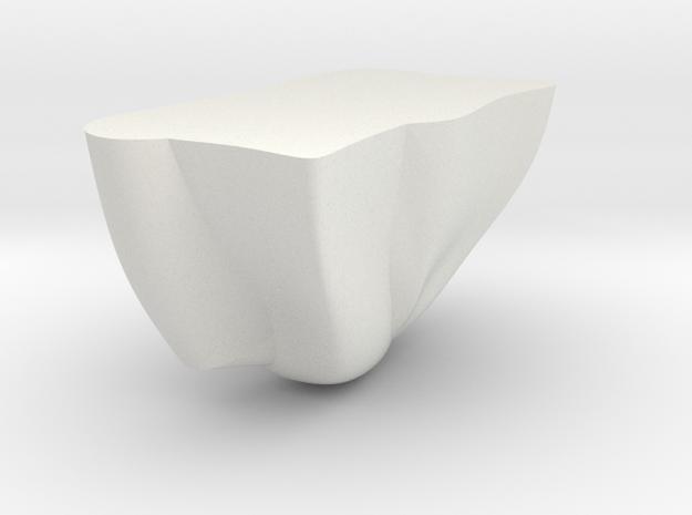 Rock Part 3 - 3D Print - REV1 - 02-23 in White Natural Versatile Plastic