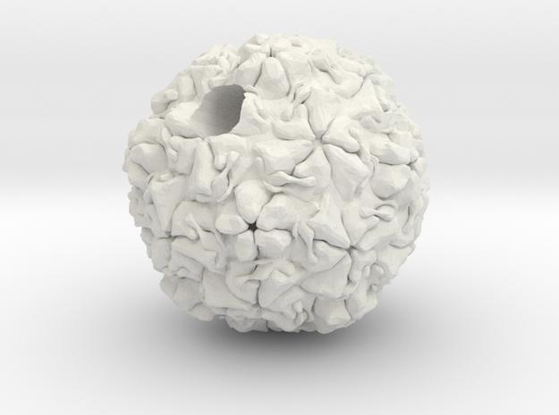 Rhinovirus Pendant in White Natural Versatile Plastic