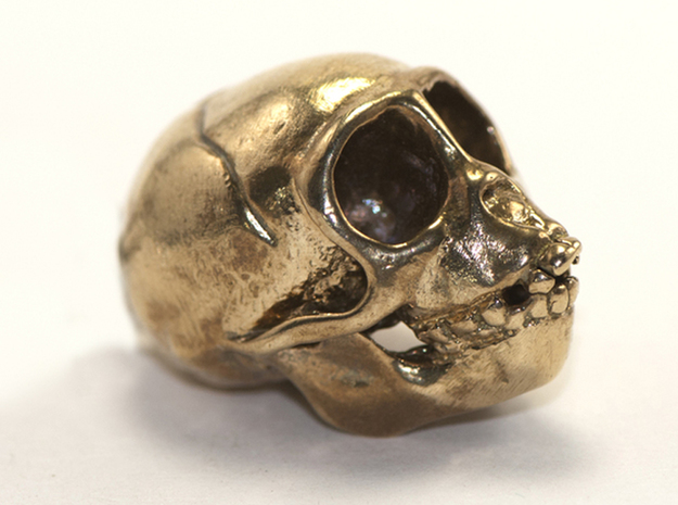 Spider Monkey Skull 43mm in Raw Bronze