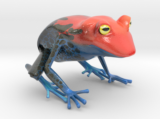 Wilds of Organica - Frog in Glossy Full Color Sandstone