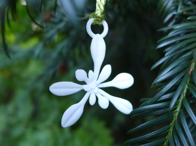 Arabidopsis Ornament