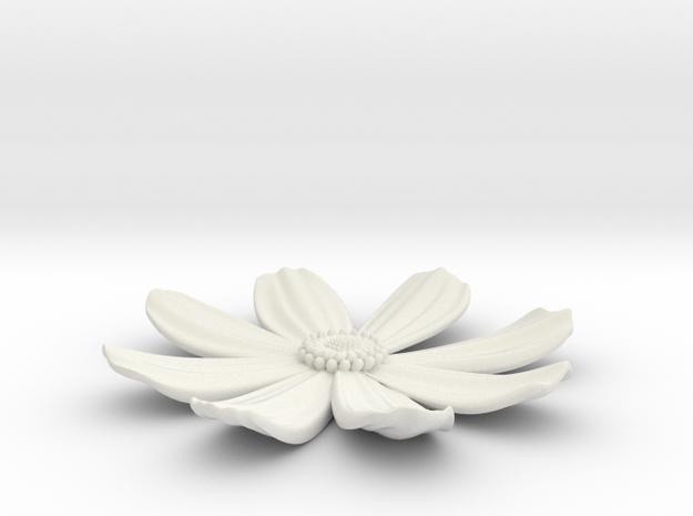 cosmos in White Natural Versatile Plastic