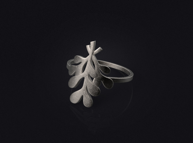 Mistletoe Ring 3d printed 3D visualization of the ring in stainless steel.