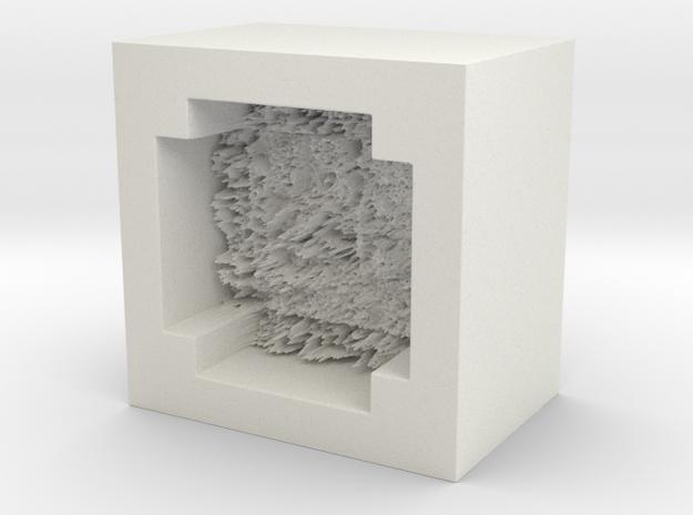 moemold00001 in White Natural Versatile Plastic