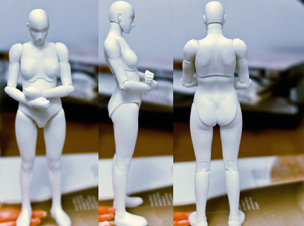 FB01-Body-01s  6inch 3d printed This is an older test print, improvements have been made since then