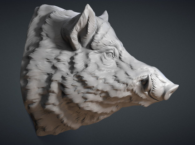 Wild Boar Wall Mount in White Strong & Flexible