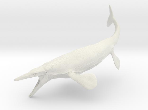 Mosasaurus (Medium/Large size)