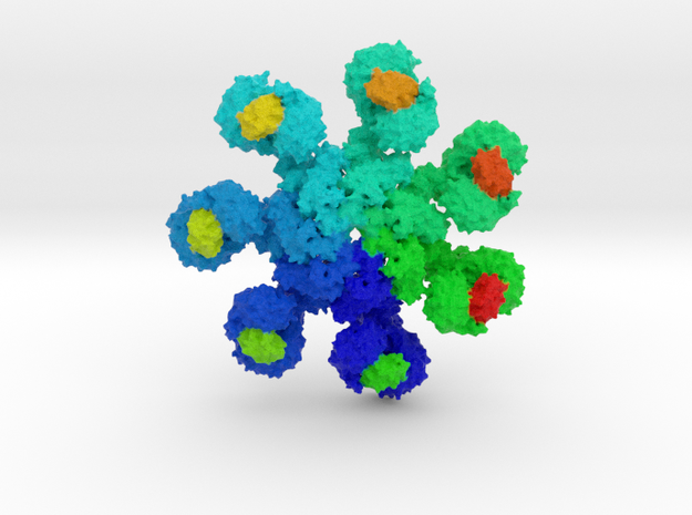 Human Apoptosome in Full Color Sandstone