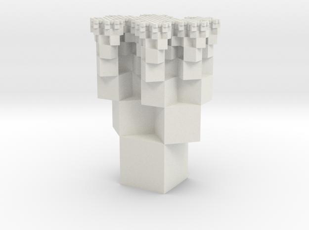 Dragon Cubes in White Natural Versatile Plastic