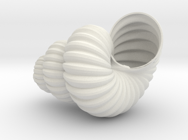 Sea  Shell in White Natural Versatile Plastic