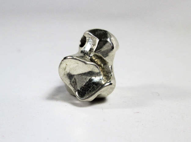 Talus Bone Charm in Polished Silver