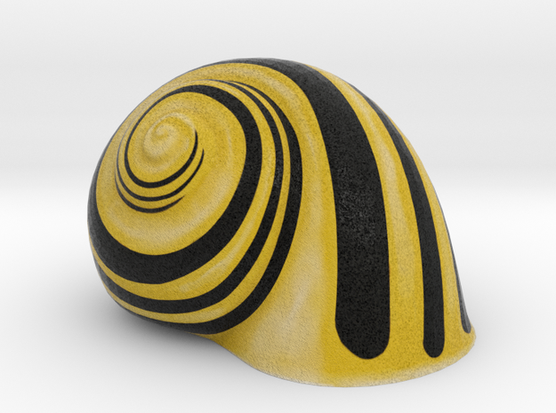 Snail Shell Yellow in Full Color Sandstone