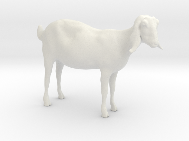 3D Scanned Nubian Goat 3cm Hollow in White Natural Versatile Plastic