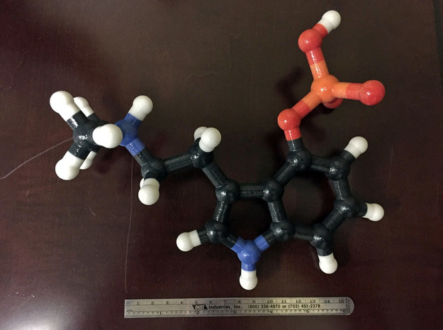 Psilocybin Molecule Model, 3 Size Options in Glossy Full Color Sandstone: 1:20