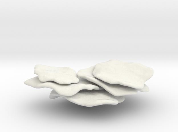 Flattop Coral ,Shelf Coral,(Montipora Capricornis) in White Strong & Flexible: 1:32
