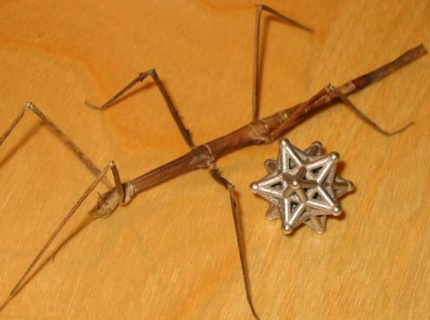ball-and-stick star 3d printed Star and stick insect