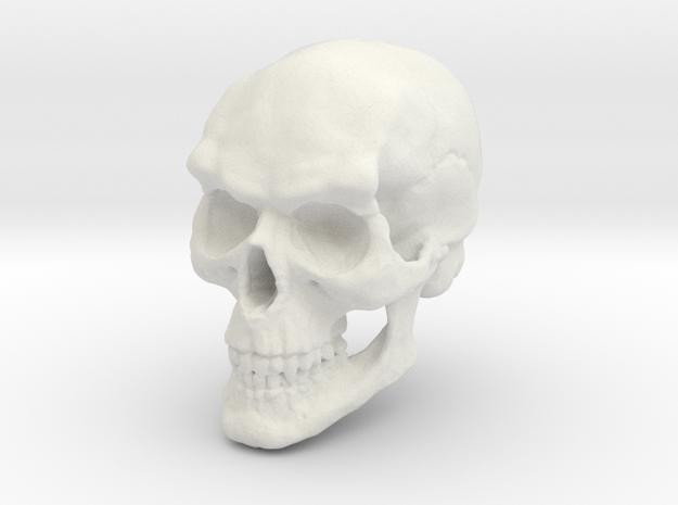 Vampire Skull in White Strong & Flexible
