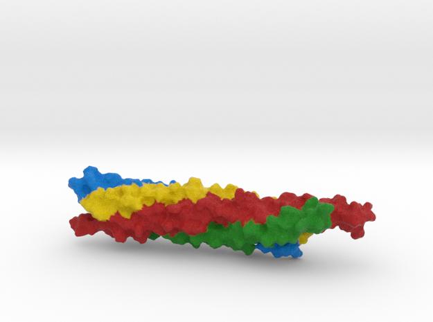 Autophagic SNARE Complex in Full Color Sandstone