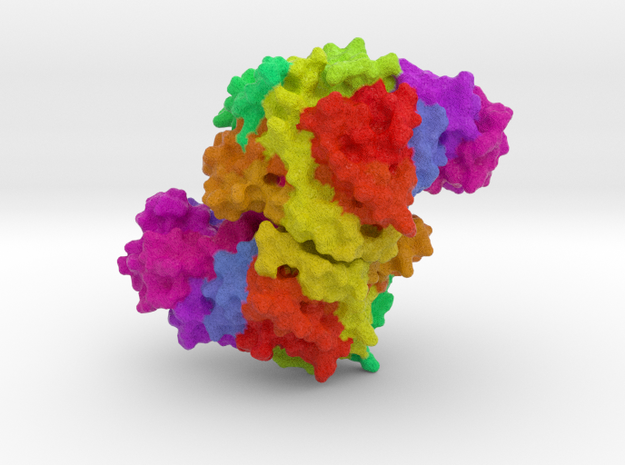 Citrate Synthase  in Full Color Sandstone