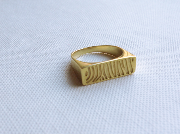 Zebra Pattern Ring in Polished Brass