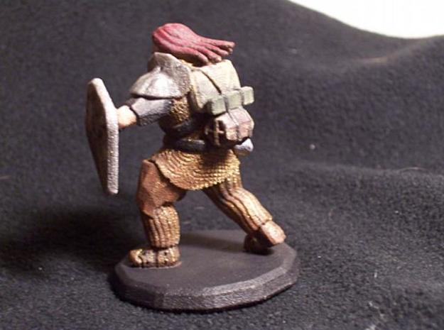Dwarf Fighter (Large) 3d printed Painted (Back)