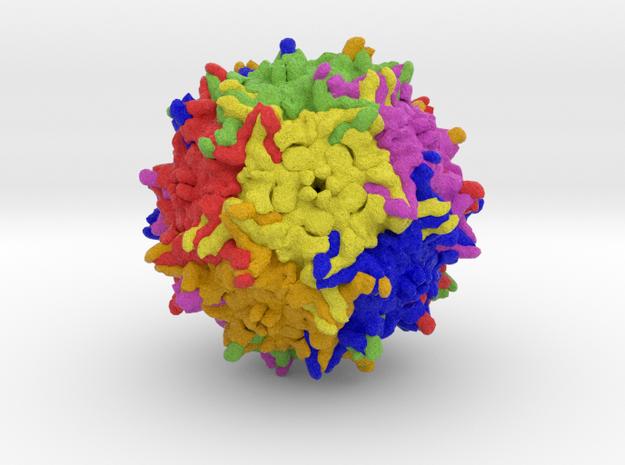 Adeno-Associated Virus 9 in Full Color Sandstone