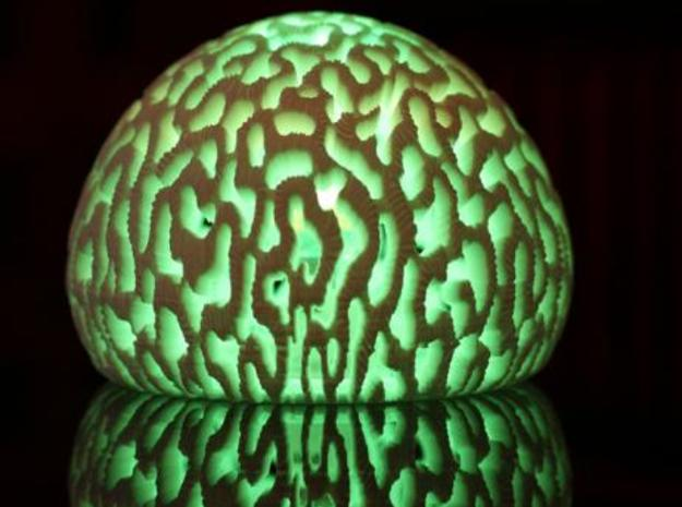 lamp corail 17+fond 3d printed Description