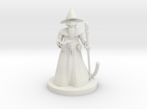 Catfolk Wizard