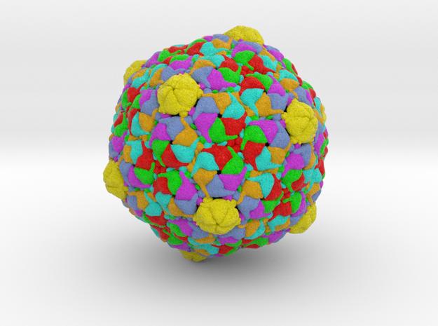 Bacteriophage HK97 in Full Color Sandstone
