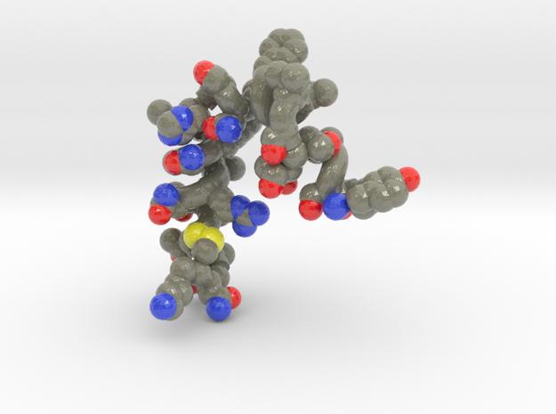 Amylin PDB ID: 2L86 in Glossy Full Color Sandstone: Medium