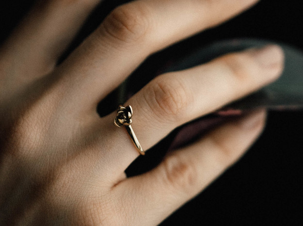 Succulent Stacking Ring No. 1 in Polished Brass: 6 / 51.5