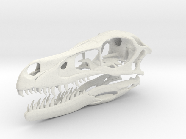 1:2 Velociraptor mongoliensis Skull and Jaw in White Natural Versatile Plastic