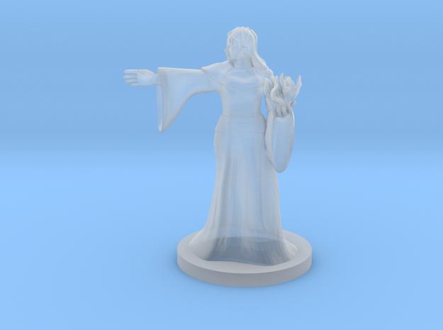 Half Orc  Female Warlock in Smooth Fine Detail Plastic