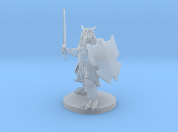Heavy Dragonborn Paladin