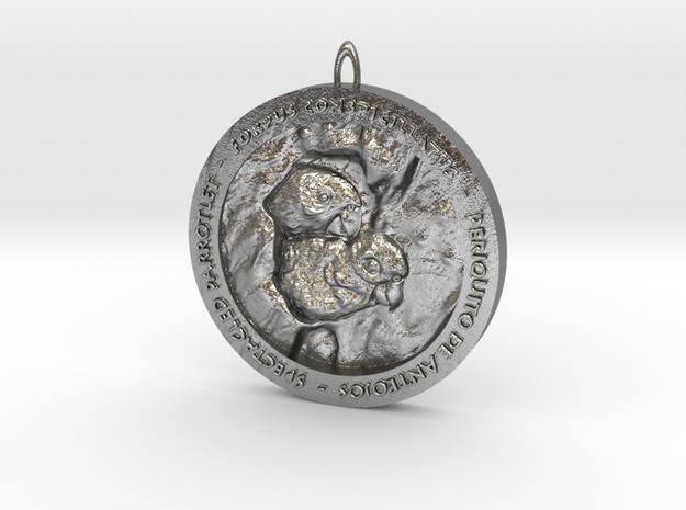 lorito de anteojos in Natural Silver
