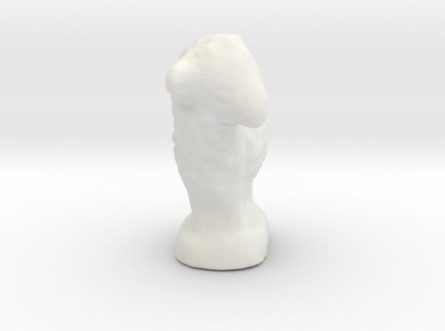 mouton_1.3 in White Natural Versatile Plastic