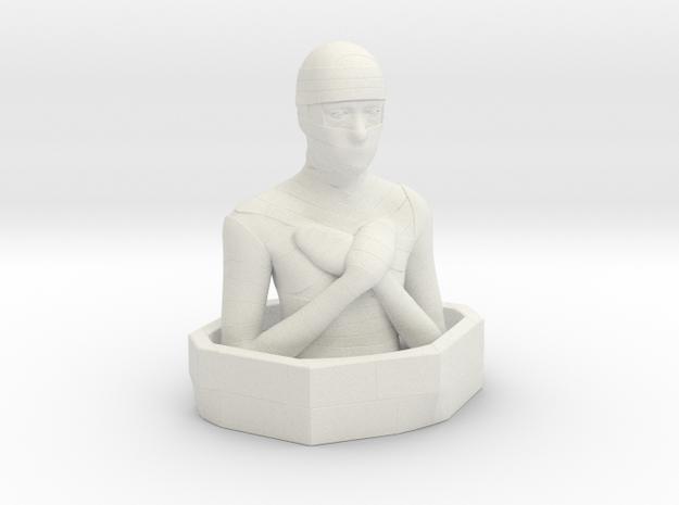 Mummy in White Natural Versatile Plastic