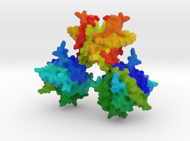 NF-κB in Full Color Sandstone