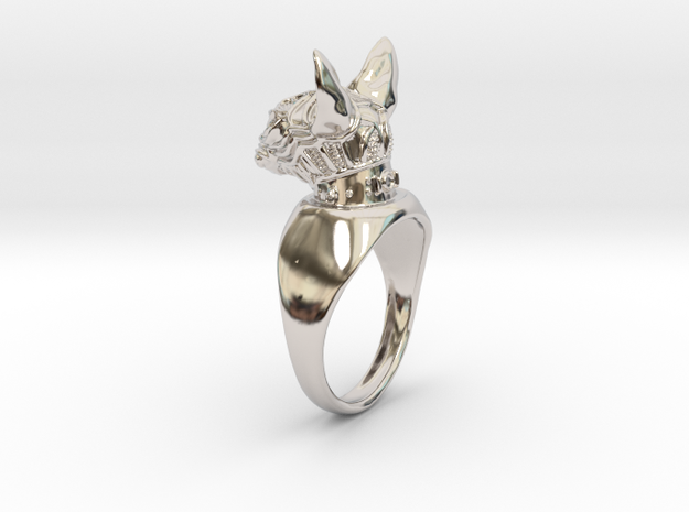 Ring Sphynx n3 in Rhodium Plated Brass
