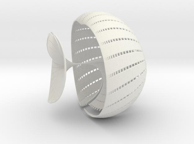 s40_55 in White Natural Versatile Plastic