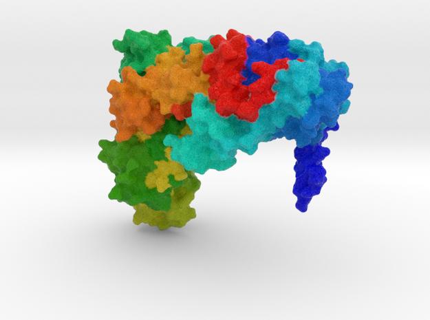 Isoleucyl-tRNA Synthetase in Full Color Sandstone