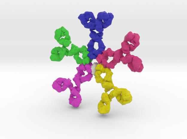 Immunoglobulin M (IgM) in Full Color Sandstone