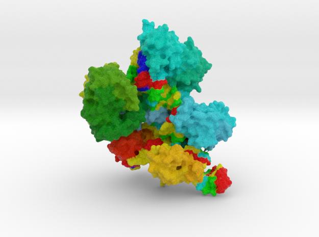 CRISPR-Cas9 in Full Color Sandstone