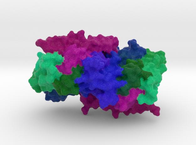 Geranylgeranyl Pyrophosphate Synthase in Full Color Sandstone