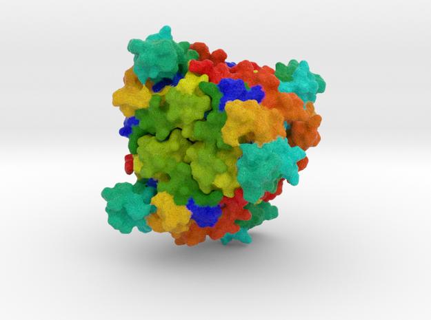 Nucleoside-Diphosphate Kinase in Full Color Sandstone