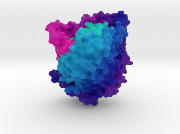 Ferric Hydroxamate Uptake Receptor in Full Color Sandstone
