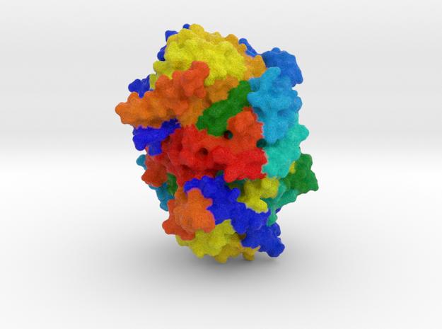 Reductive Dehalogenase in Full Color Sandstone