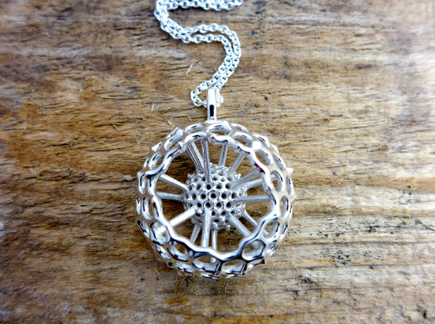 Spumellaria spineless Radiolarian - Science Jewelr in Polished Silver