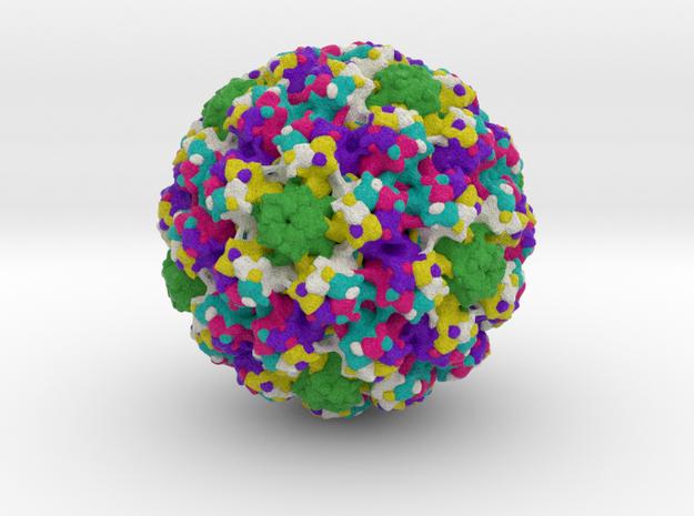 Bovine Papillomavirus in Full Color Sandstone