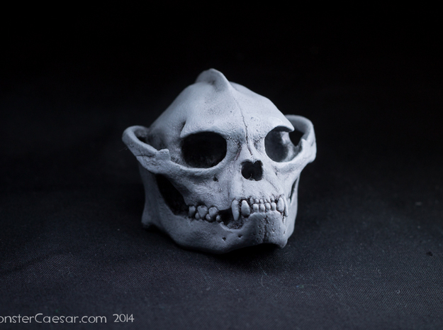 Skull 6 Hollow 2 in White Strong & Flexible
